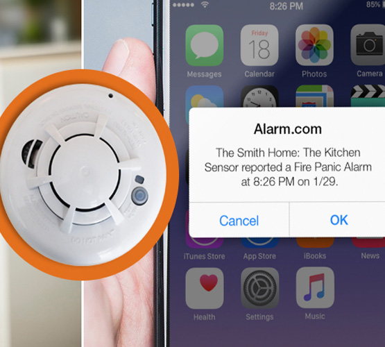 Fire alarm monitoring